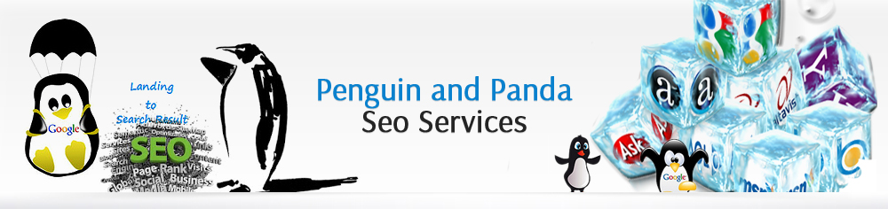 Professional SEO services India
